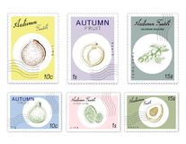 Post Stamps Set of Autumn Fruits with Paper Cut Art. Autumn Fruits, Post Stamps Set of Hand Drawn Sketch Camu Camu, Fig, Lime and Peach or Nectarine in Trendy Stock Illustration