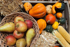 Autumn fruits. Pumpkins, apples, pears, tomatos and straw on a wooden plate Royalty Free Stock Photos
