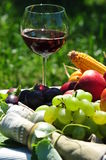 Autumn fruits and red wine Royalty Free Stock Photos