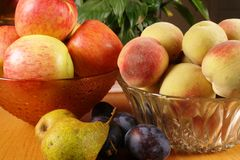 Autumn fruits. Some colorful ripe autumn fruits Stock Photos