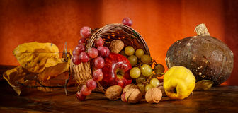 Autumn. Fruits in the spotlight stock images