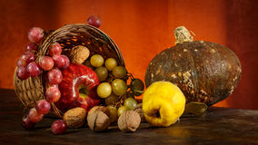 Autumn. Fruits in the spotlight royalty free stock image