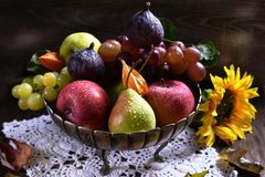 Autumn fruits still life. On wooden table in rustic style stock image