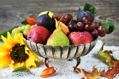 Autumn fruits still life. In vintage style metal platter royalty free stock photos