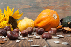 Autumn fruits on table. Different kinds of autumn fruits on a wooden table Royalty Free Stock Photography