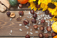 Autumn fruits on table. Different kinds of autumn fruits on a wooden table Royalty Free Stock Photo