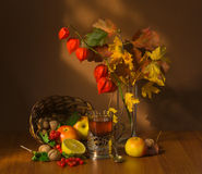 Autumn fruits and tea Royalty Free Stock Photography