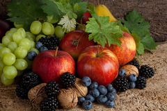 Autumn fruits for thanksgiving Stock Photo