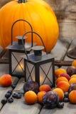 Autumn fruits and traditional lanterns Stock Photos