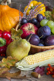 Autumn fruits and vegetables abstract still life Stock Photography