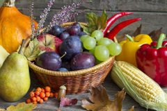 Autumn fruits and vegetables abstract still life Royalty Free Stock Images