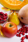 Autumn fruits and vegetables assorted Royalty Free Stock Image