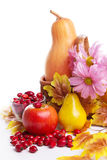 Autumn fruits and vegetables in basket Royalty Free Stock Images