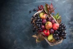 Autumn fruits and vegetables in basket Stock Photography