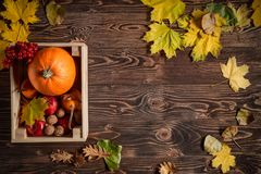 Autumn fruits and vegetables. Over wooden background, top view, flat lay stock image