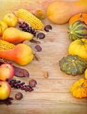 Autumn fruits and vegetables Royalty Free Stock Images