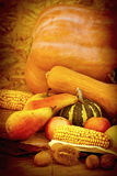 Autumn fruits and vegetables Stock Images