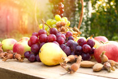 Autumn fruits in wicker basket Organic autumn fruits Royalty Free Stock Photo