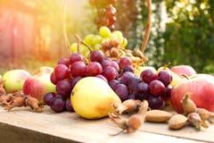 Autumn fruits in wicker basket Organic autumn fruits Royalty Free Stock Photo