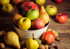 Autumn fruits. On the wooden table royalty free stock photos