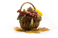 Autumn fruits with yellow leaves in a basket Royalty Free Stock Image