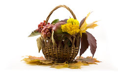 Autumn fruits with yellow leaves in a basket Royalty Free Stock Photos
