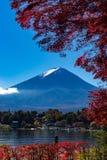 Autumn Fuji nedgångsidor arkivbilder