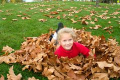 Autumn fun. Cute blond smiling girl having fun in leaves in autumn Royalty Free Stock Photo