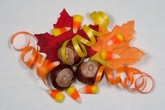 Autumn Fun. Autumn novelties on white parchment background Royalty Free Stock Image