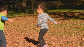 Autumn fun in the park stock video footage