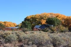 Autumn in galisteo Royalty Free Stock Photo