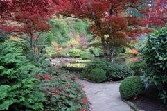 Autumn garden Royalty Free Stock Image
