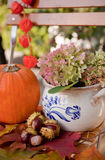 Autumn in the garden Royalty Free Stock Image