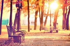 Autumn garden with bench Royalty Free Stock Photos