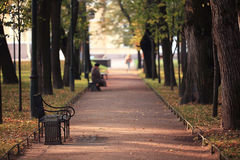 Autumn garden with bench Royalty Free Stock Photography