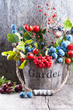 Autumn garden berries on the old wooden background Stock Photo