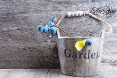 Autumn garden berries on the old wooden background Royalty Free Stock Images