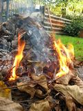 Autumn garden campfire Royalty Free Stock Images