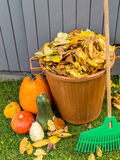 Autumn garden cleaning Stock Image