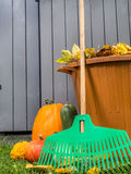 Autumn garden cleaning Stock Images