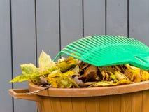 Autumn garden cleaning Stock Photos