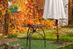 Autumn garden with colored leaves Royalty Free Stock Image