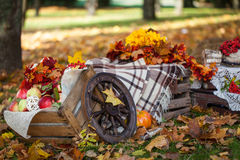 Autumn garden decor Royalty Free Stock Images