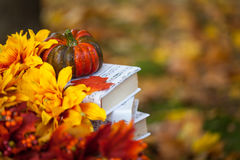 Autumn garden decor. With flowers, pumpkin and books Royalty Free Stock Photos