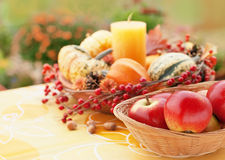 Autumn garden decor Royalty Free Stock Photos