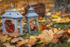 Autumn garden decor Stock Photos