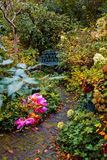 Autumn garden Stock Photography