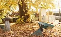 Autumn Garden Scene With Rake And Wheelbarrow Royalty Free Stock Photos