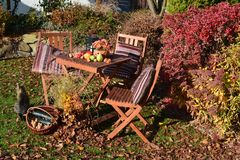 Autumn garden with sitting and autumn decorations. Autumn garden with sitting autumn decorations and cat royalty free stock image
