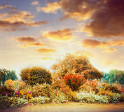 Autumn garden sunset landscape with beautiful sky stock images